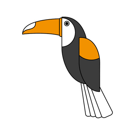 Beautiful toucan bird icon vector illustration graphic design Illustration