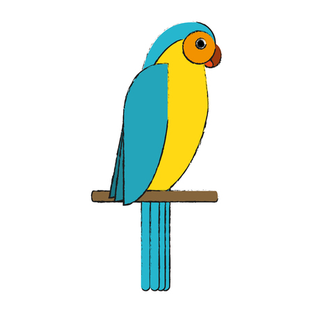 Beautiful parrot bird icon vector illustration graphic design Illustration