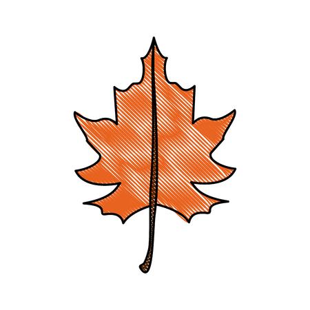vegetate: fall leaf icon image vector illustration design