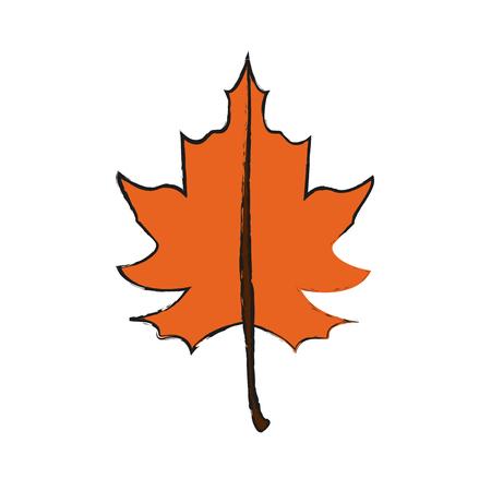 fall leaf icon image vector illustration design