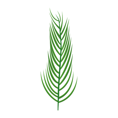 Feathered leaf icon.