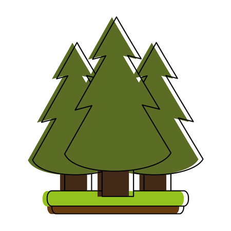 lush foliage: pine tree forest icon image vector illustration design