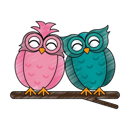 lovebirds owls icon image vector illustration design