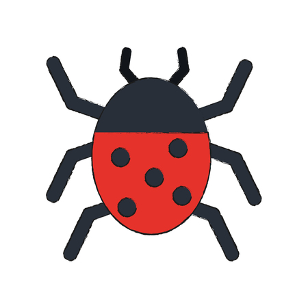 simple life: ladybug beetle insect or bug icon image vector illustration design