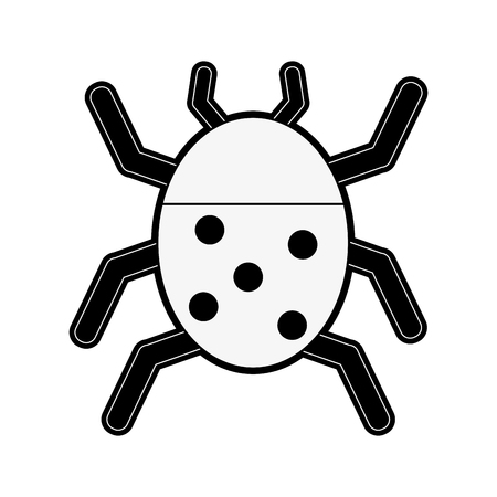 antennae: ladybug beetle insect or bug icon image vector illustration design