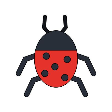simple life: Ladybug insect or bug icon image vector illustration design. Illustration