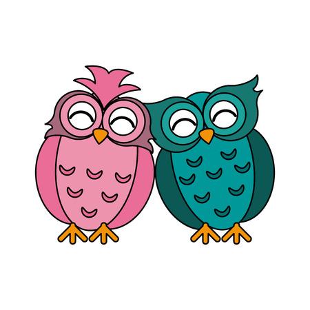 owls lovebirds romance icon image vector illustration design