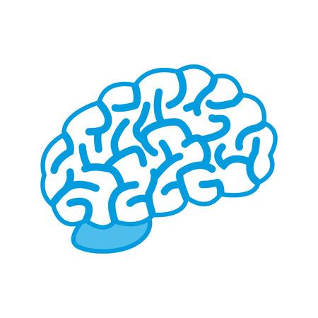 Cerebro humano símbolo icono ilustración vectorial diseño gráfico Ilustración de vector