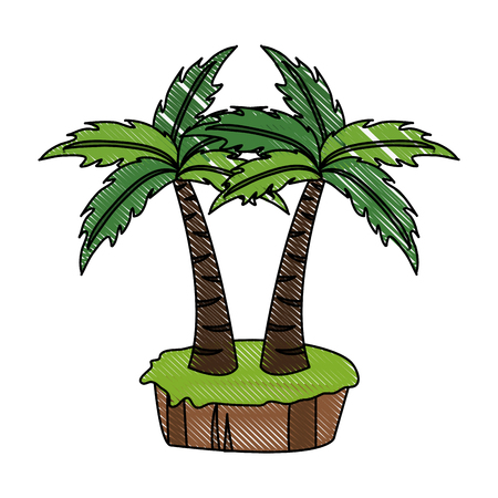 Palms tree isolated icon vector illustration graphic design