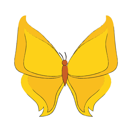 Beautiful buttefly isolated icon vector illustration graphic design