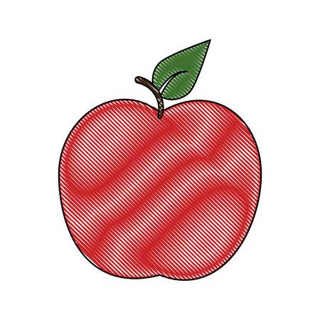 Apple delicious fruit Icon vector illustration graphic design Illustration
