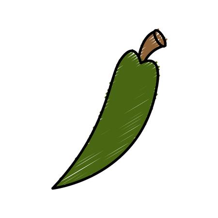 cayenne: Chilli spice food icon vector illustration graphic design Illustration