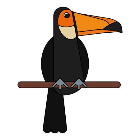 Tucan bird cartoon icon vector illustration graphic design