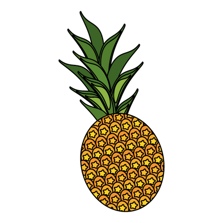 Pineapple sweet fruit icon vector illustration graphic design