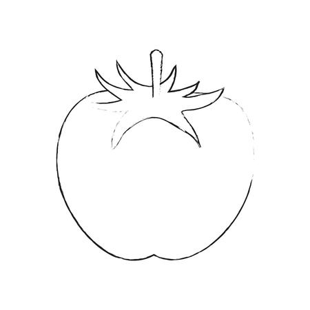 Progettazione grafica dell'illustrazione di vettore dell'icona della verdura fresca del pomodoro Archivio Fotografico - 90357205