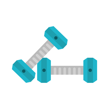Dumbbells gym weigth icon vector illustration graphic design