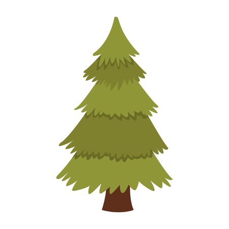 Tree pine isolated icon vector illustration graphic design