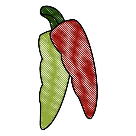 Chillis spice food icon vector illustration graphic design
