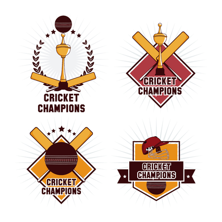 Cricket champions emblem icon vector illustration graphic design Vettoriali