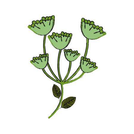 asparagus vegetable food icon vector illustration graphic design Illustration