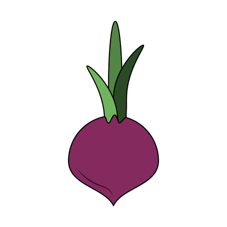 Onion vegetable isolated icon vector illustration graphic design