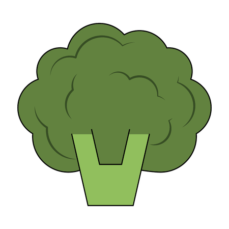 Broccoli vegetable isolated icon vector illustration graphic design