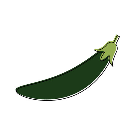 Spicy chilli isolated icon  illustration graphic design