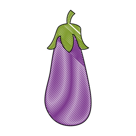 Eggplant fresh vegetable icon vector illustration graphic design Vettoriali