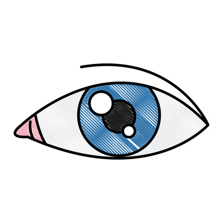 Human eye isolated icon vector illustration graphic design