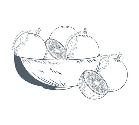 Oranges on bowl hand draw icon vector illustration graphic design