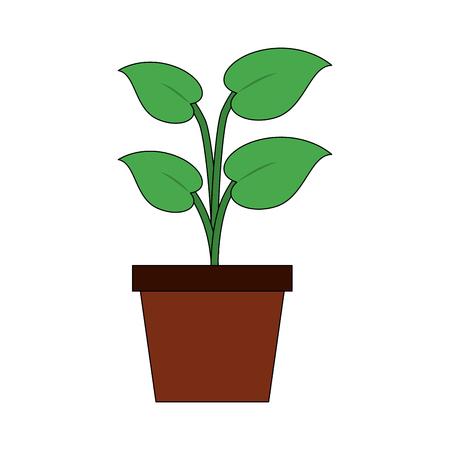 Plant in pot icon vector illustration graphic design.
