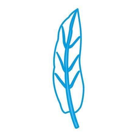 Leaf plant symbol icon vector illustration graphic design