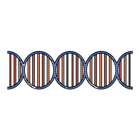 Human dna symbol icon vector illustration graphic design Illustration