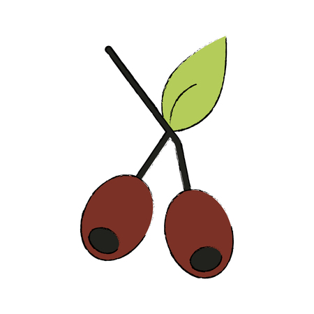 Coffee beans plant icon vector illustration graphic design