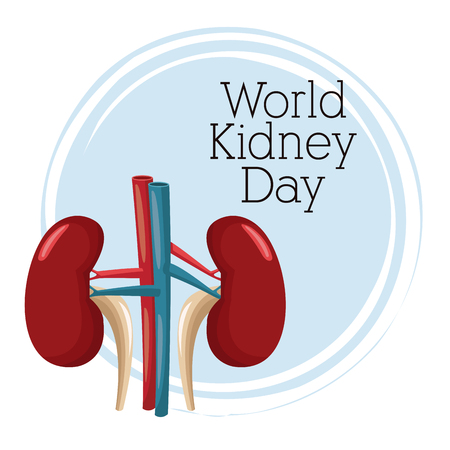 World kidney day icon. Vector illustration graphic design.