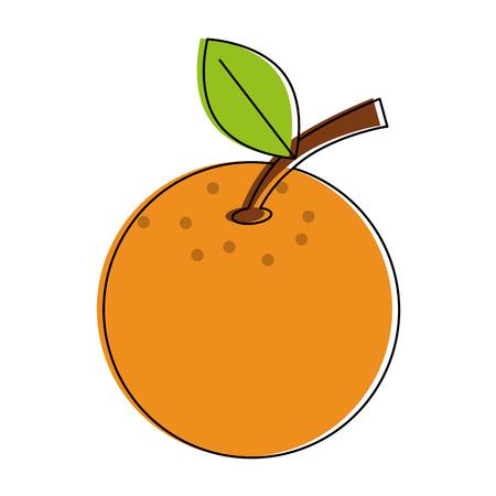 Orange citric fruit icon vector illustration graphic design.
