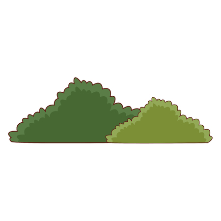 Bushes nature symbol icon vector illustration graphic design Illustration