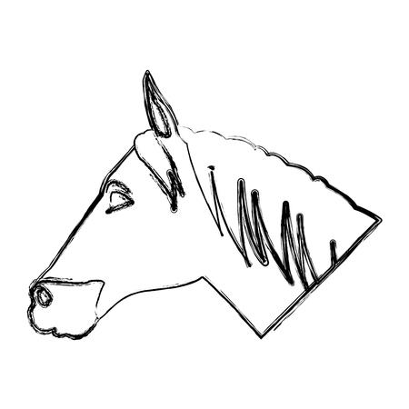 Horse head cartoon icon vector illustration graphic design Illustration