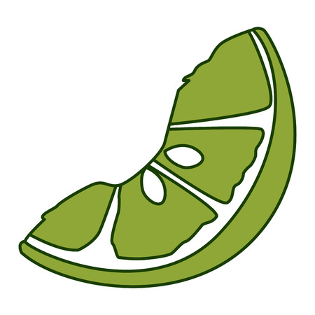 Lemon sliced isolated icon vector illustration graphic design