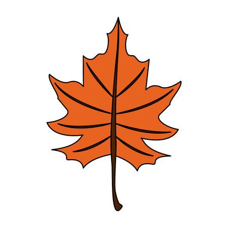 Autumn leaf symbol icon vector illustration graphic design