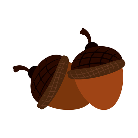 Nuts cartoon isolated icon vector illustration graphic design.