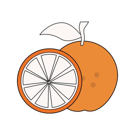 Orange citric fruit icon vector illustration graphic design