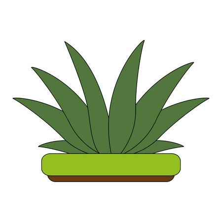 Bush plant symbol icon vector illustration graphic design