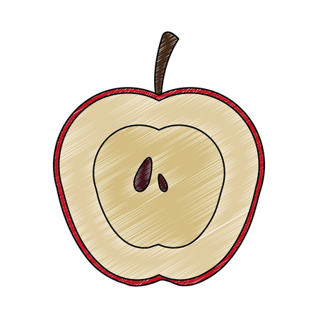 Apple fruit isolated vector illustration graphic design