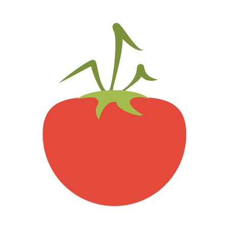 Tomato vegetable isolated vector illustration graphic design