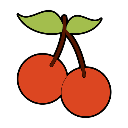 Cherries sweet fruits vector illustration graphic design