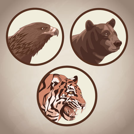 Eagle, tiger and bear drawing  over brown background vector illustration graphic design Stock Illustratie