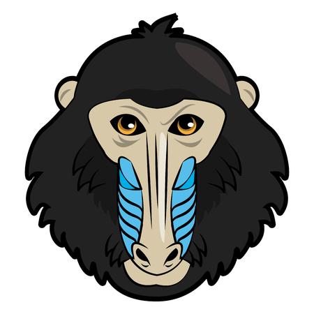Mandrel monkey Wild animal head vector illustration graphic design Vectores