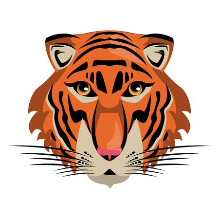 Tiger Wild animal head vector illustration graphic design Illustration