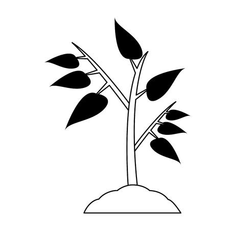 Plant on ground vector illustration graphic design
